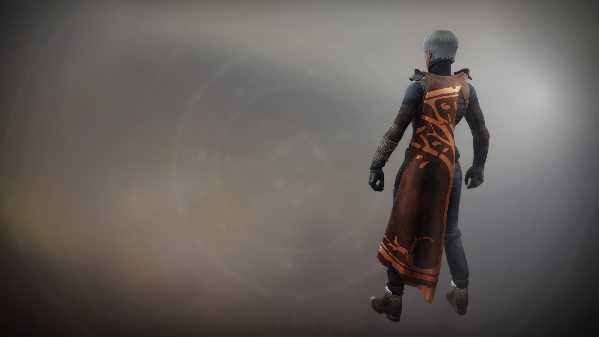 An in-game render of the Iron Fellowship Cloak.