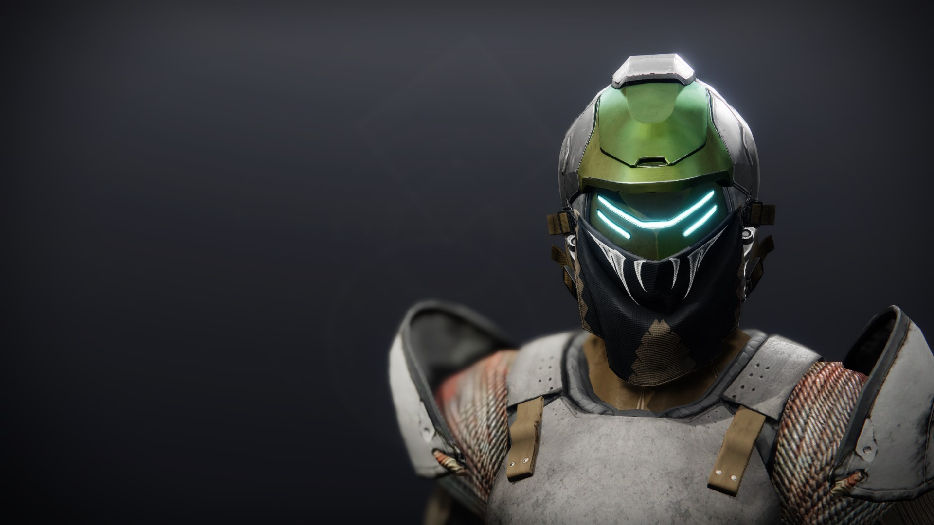 An in-game render of the Illicit Collector Helm.