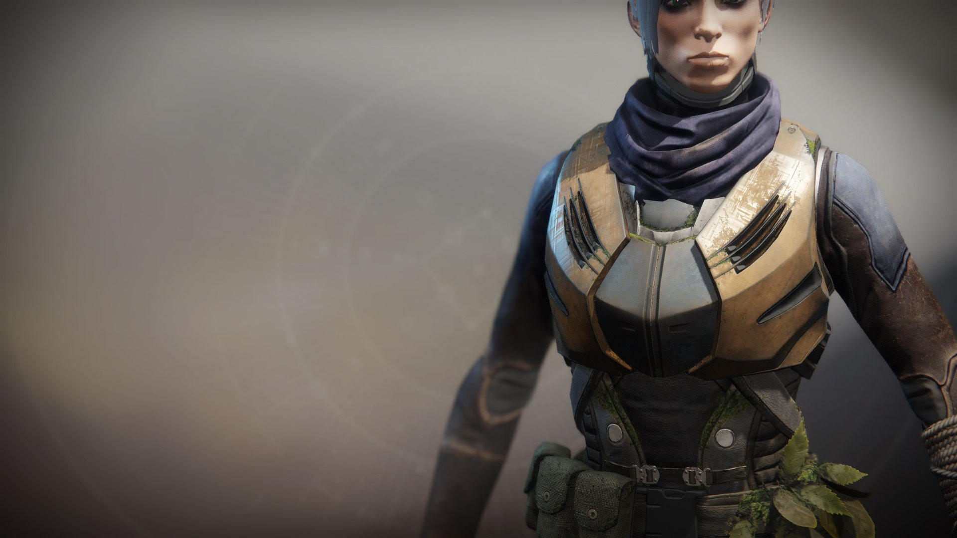 An in-game render of the Substitutional Alloy Vest.