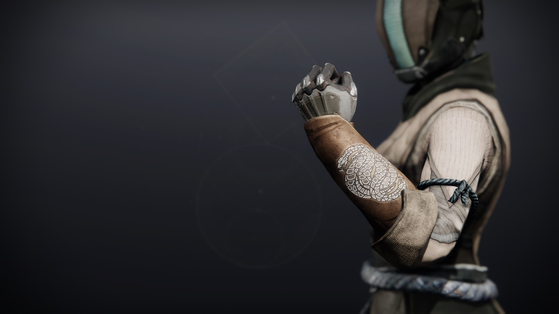 An in-game render of the Illicit Collector Gloves.