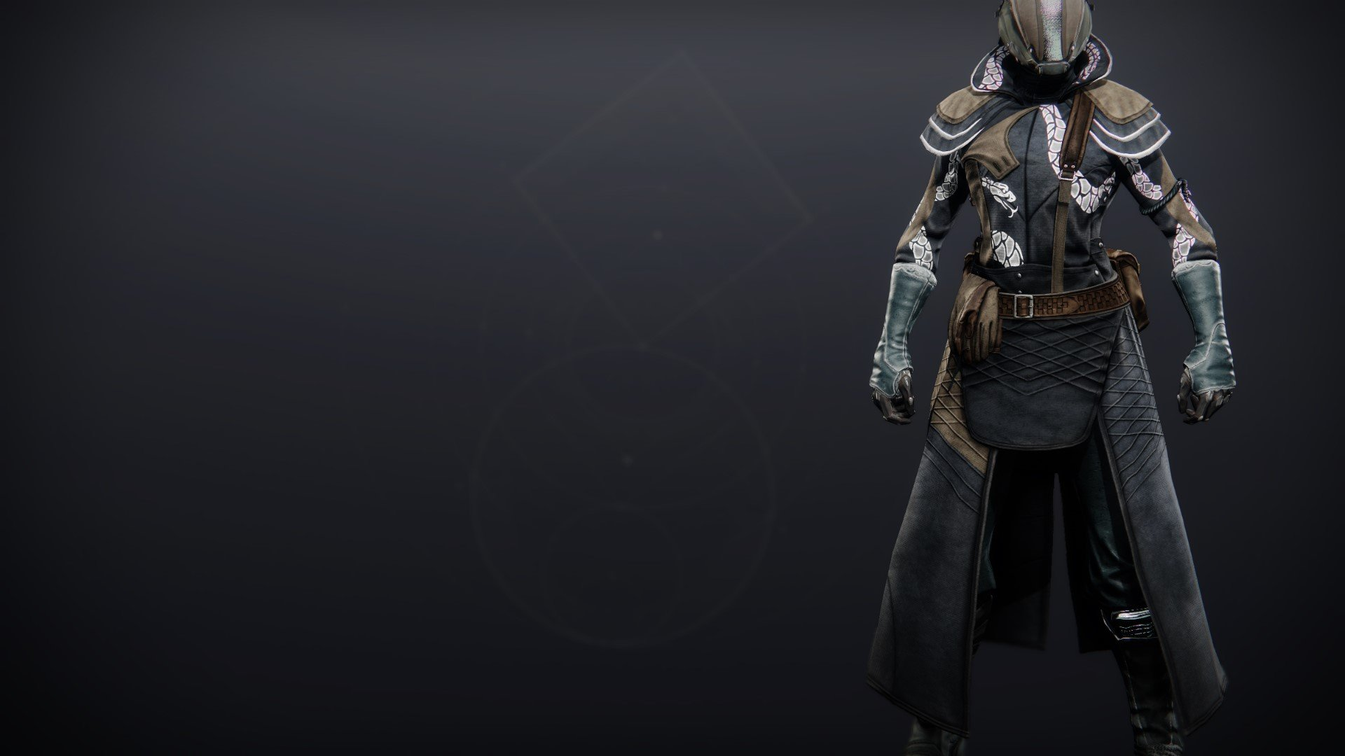 An in-game render of the Illicit Collector Robes.
