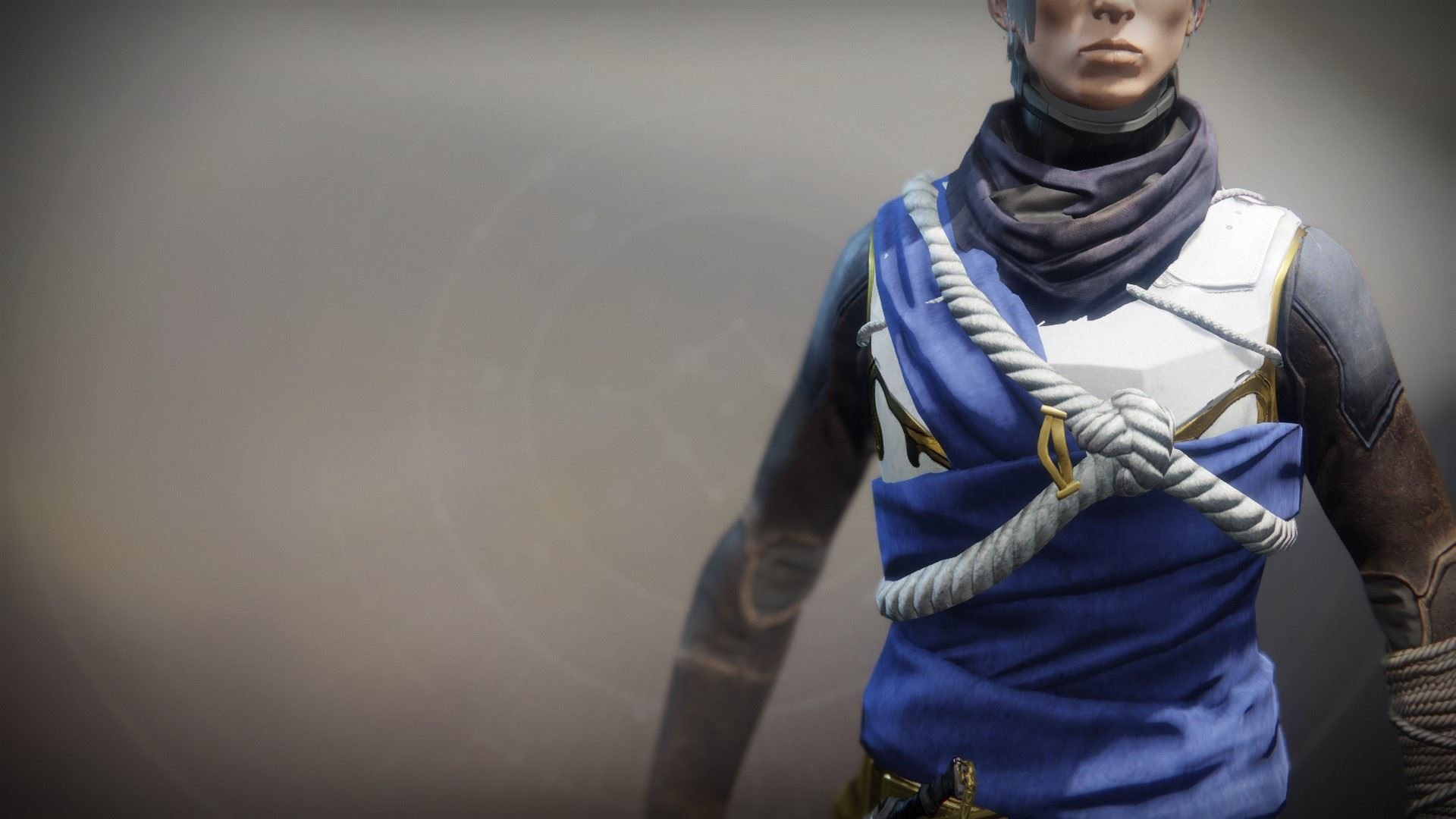 An in-game render of the Solstice Vest (Resplendent).