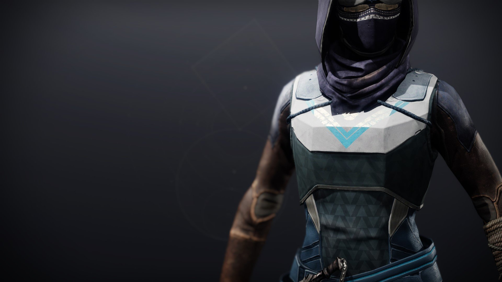 An in-game render of the Frumious Vest.