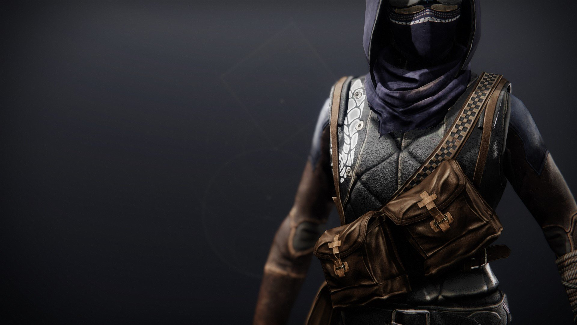 An in-game render of the Illicit Collector Vest.