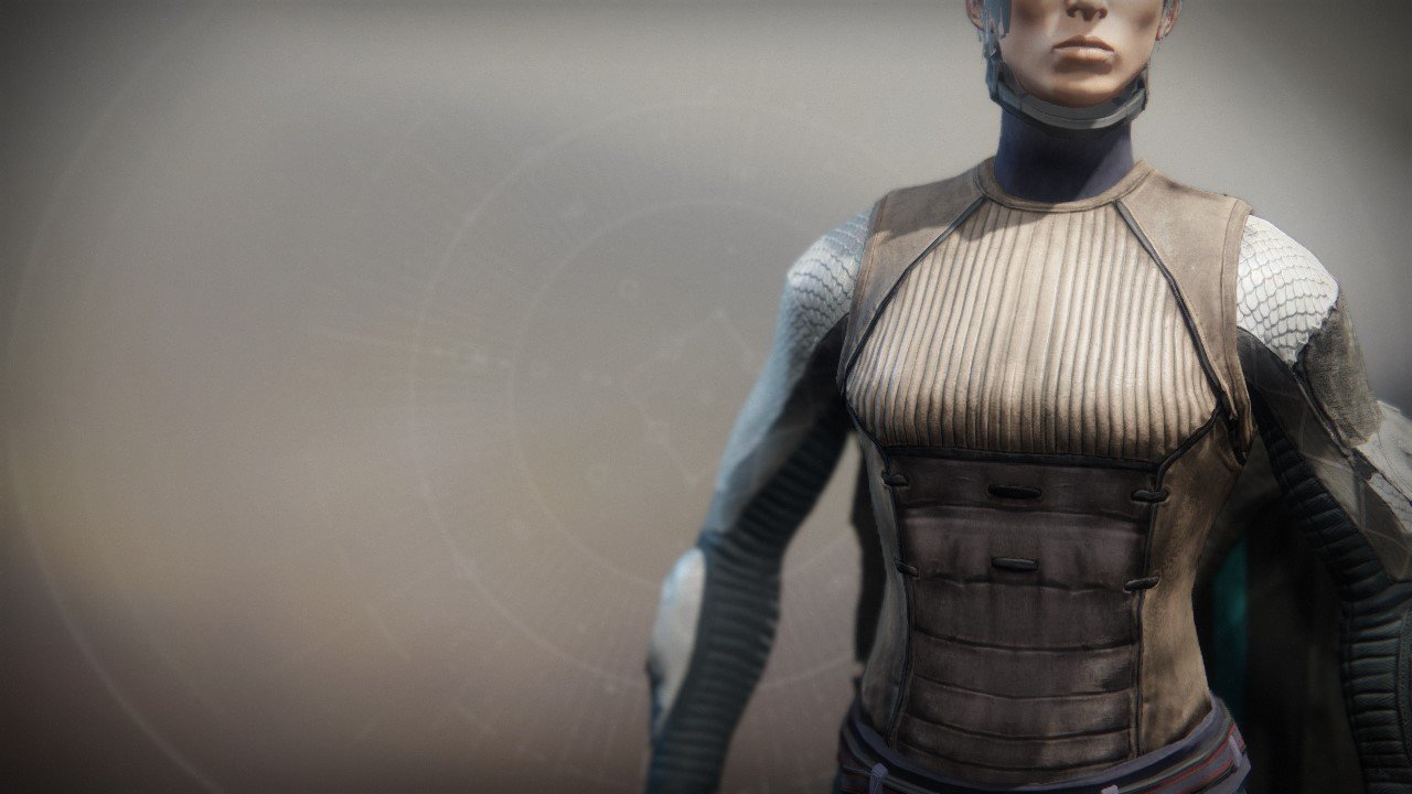 An in-game render of the Refugee Vest.