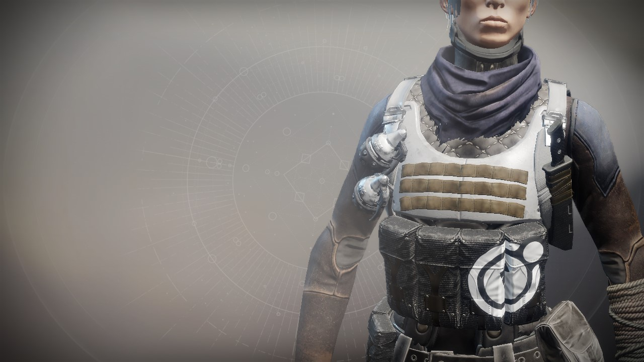 An in-game render of the Anti-Extinction Vest.
