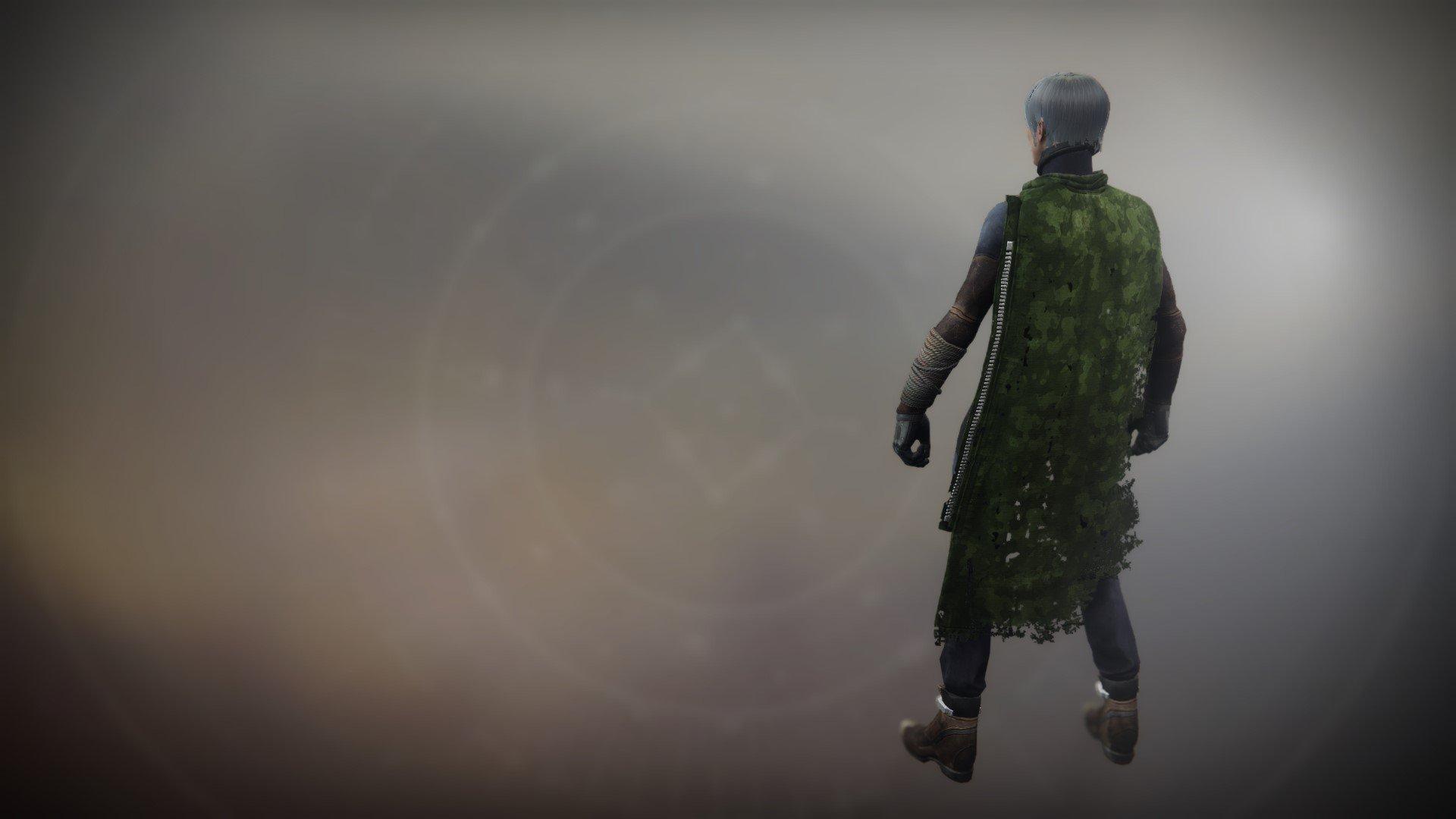 An in-game render of the Wildwood Cloak.