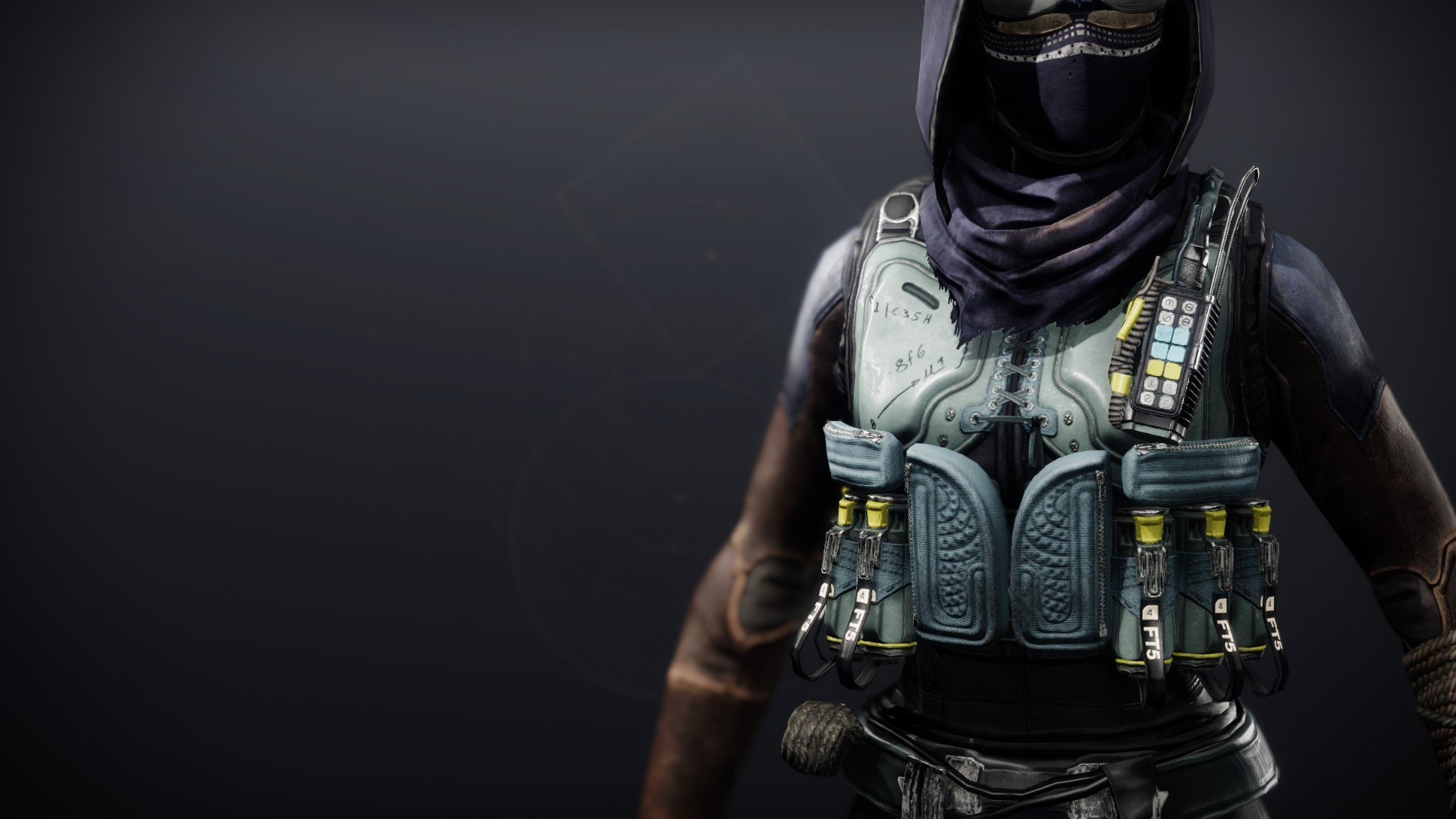 An in-game render of the Crystocrene Vest.