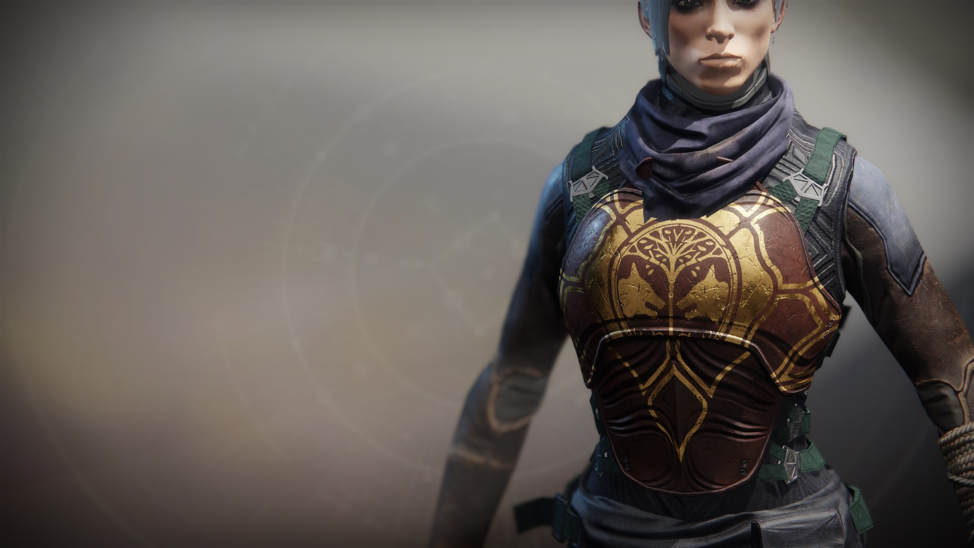 An in-game render of the Iron Fellowship Vest.