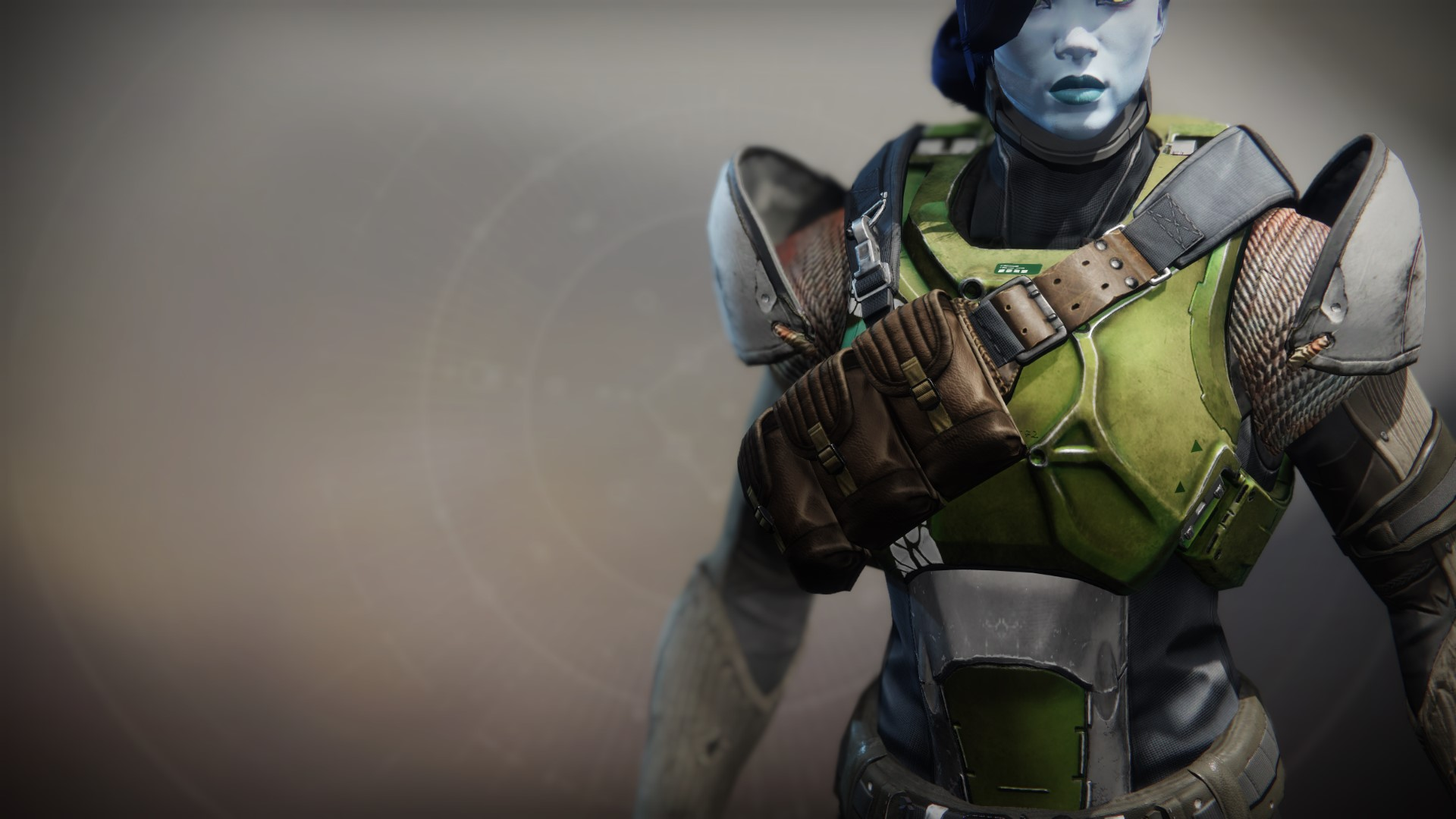 An in-game render of the Illicit Collector Plate.