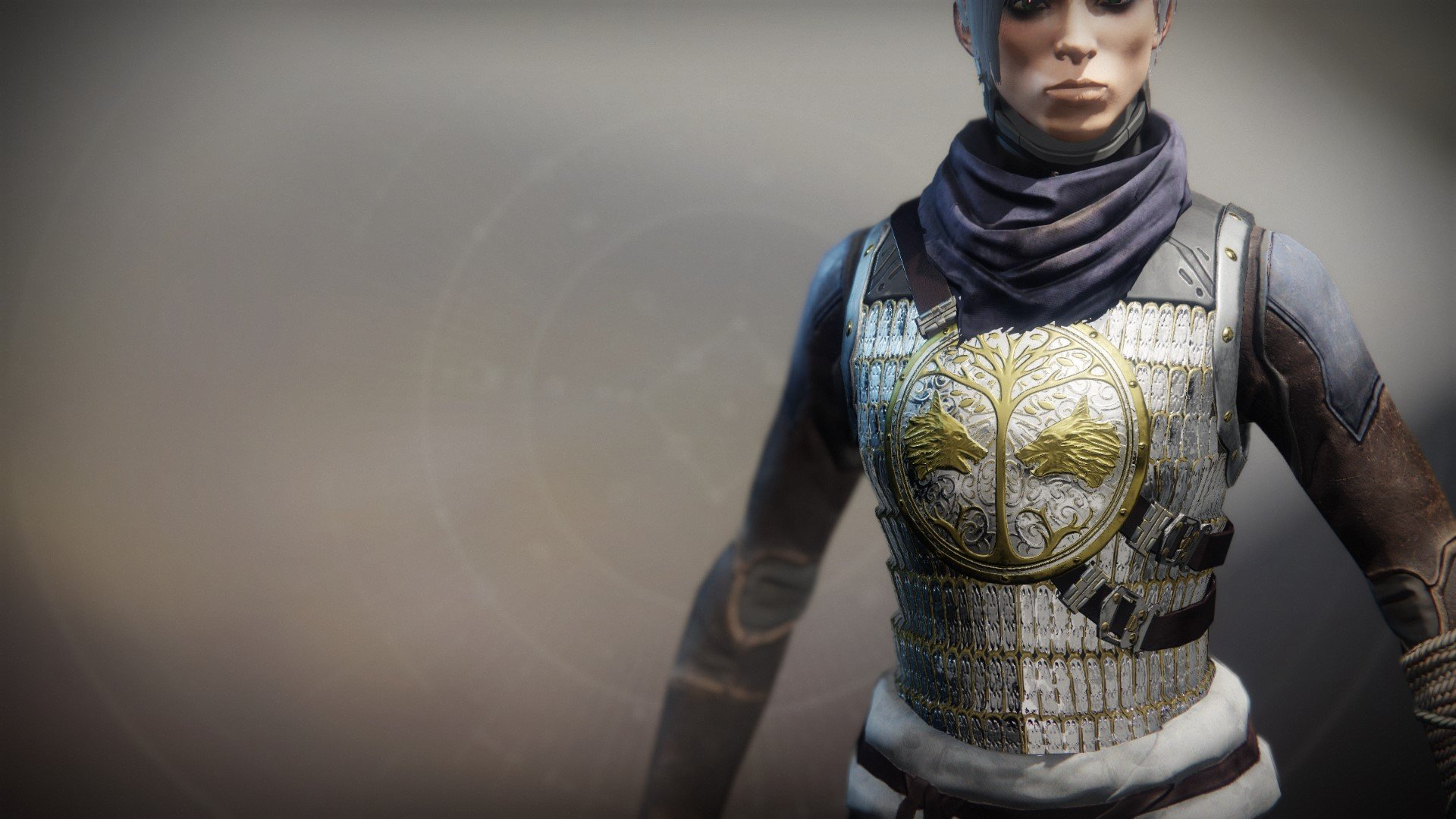 An in-game render of the Iron Truage Vest.
