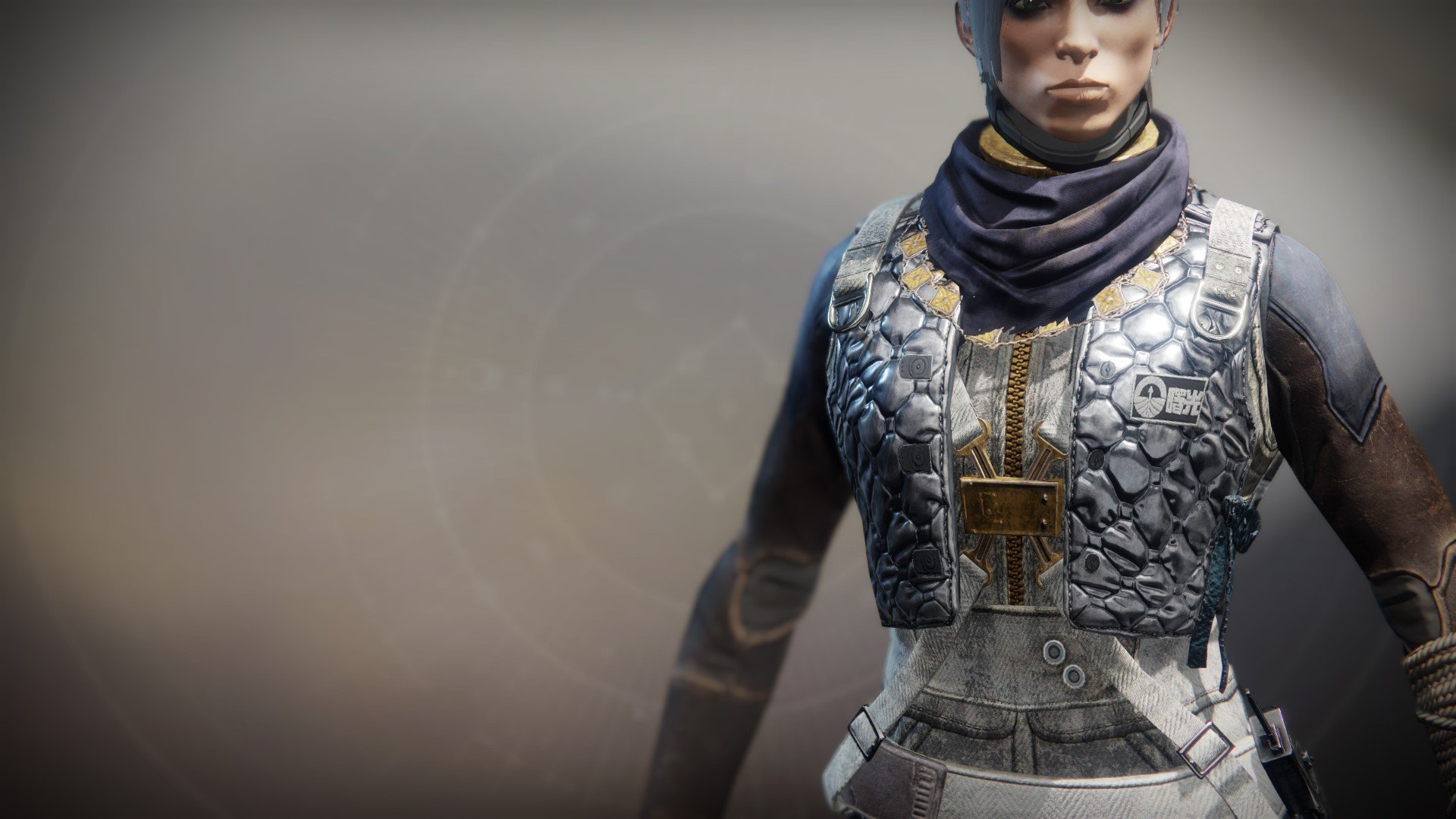 An in-game render of the Dreambane Vest.