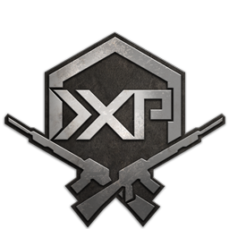 Image of Double Weapon XP Token