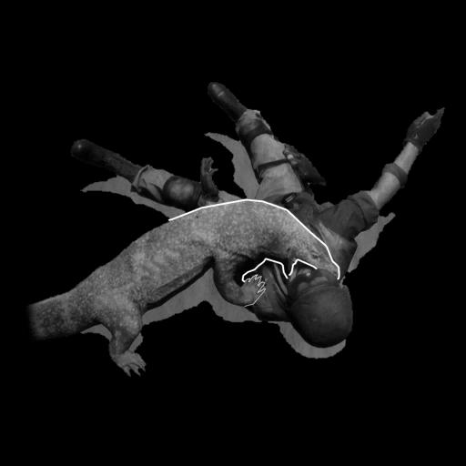 Image of Komodo Dragon