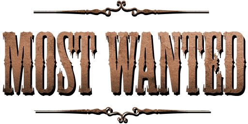 Bundle logo of Most Wanted