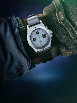 Image of Silver Diver
