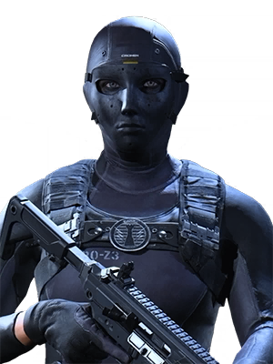 Image of Rook