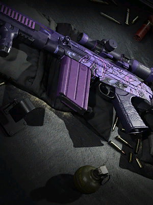 Royal Assassin Weapon Bundle