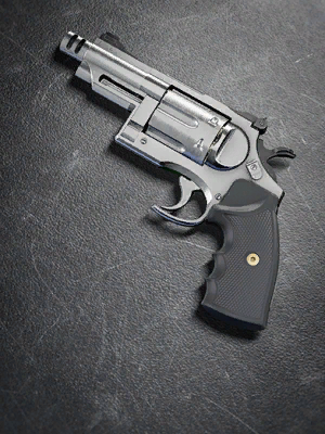 Image of Concealed Carry